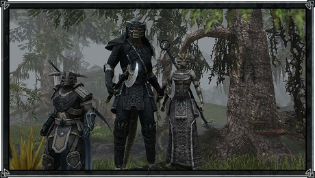 elderscrollsonline/gameplay/505.png