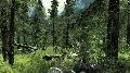 Landschaft 04