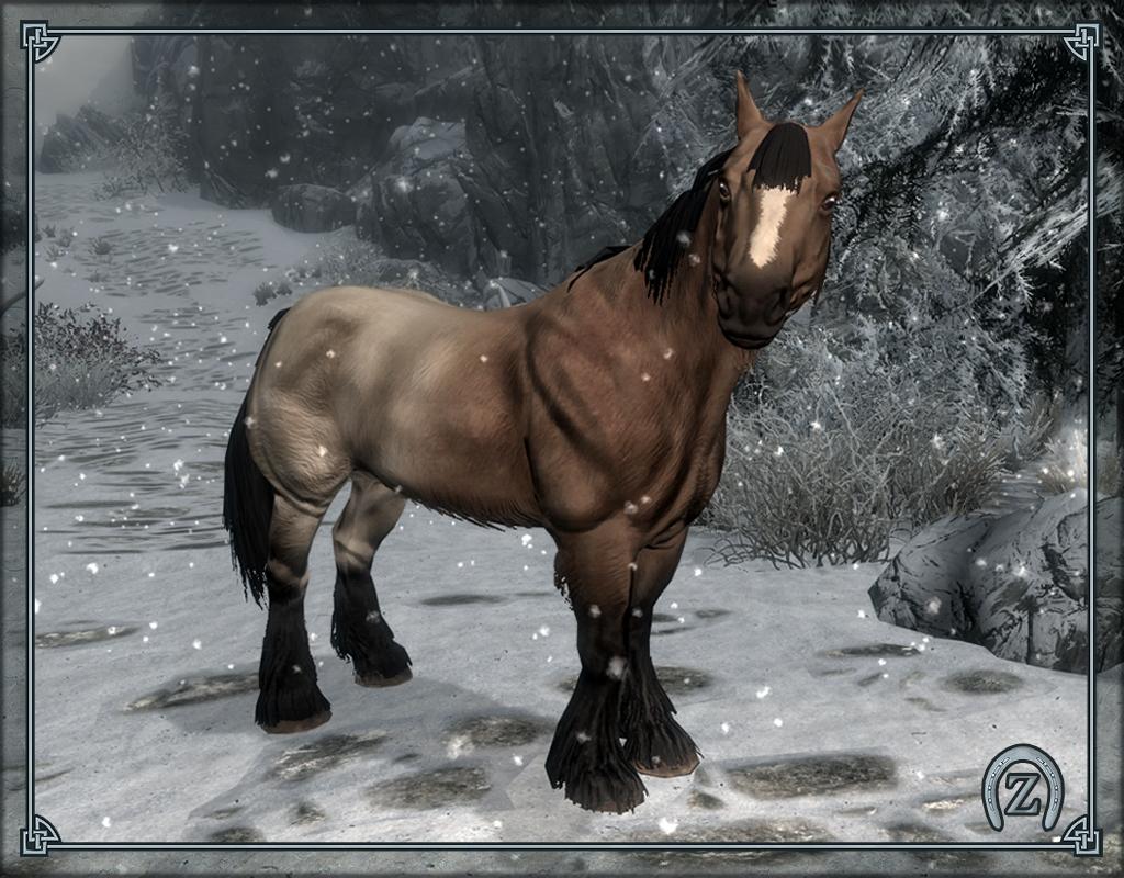 skyrim pferde
